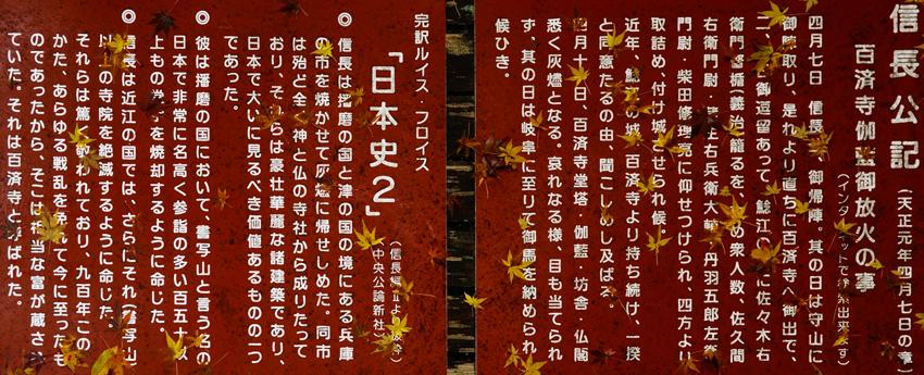 _DSC0761.jpg